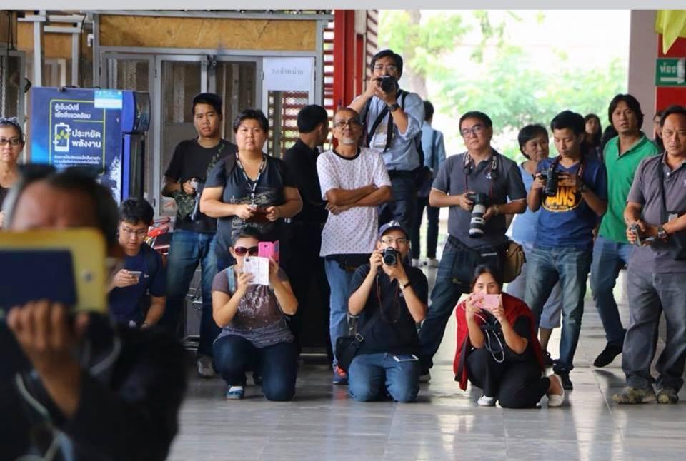 Thai Mob